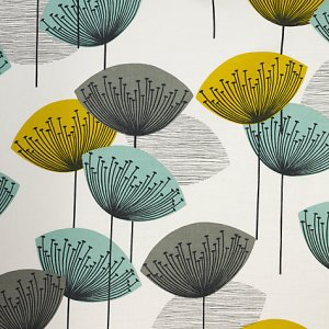 Dandelion Clocks by Sanderson